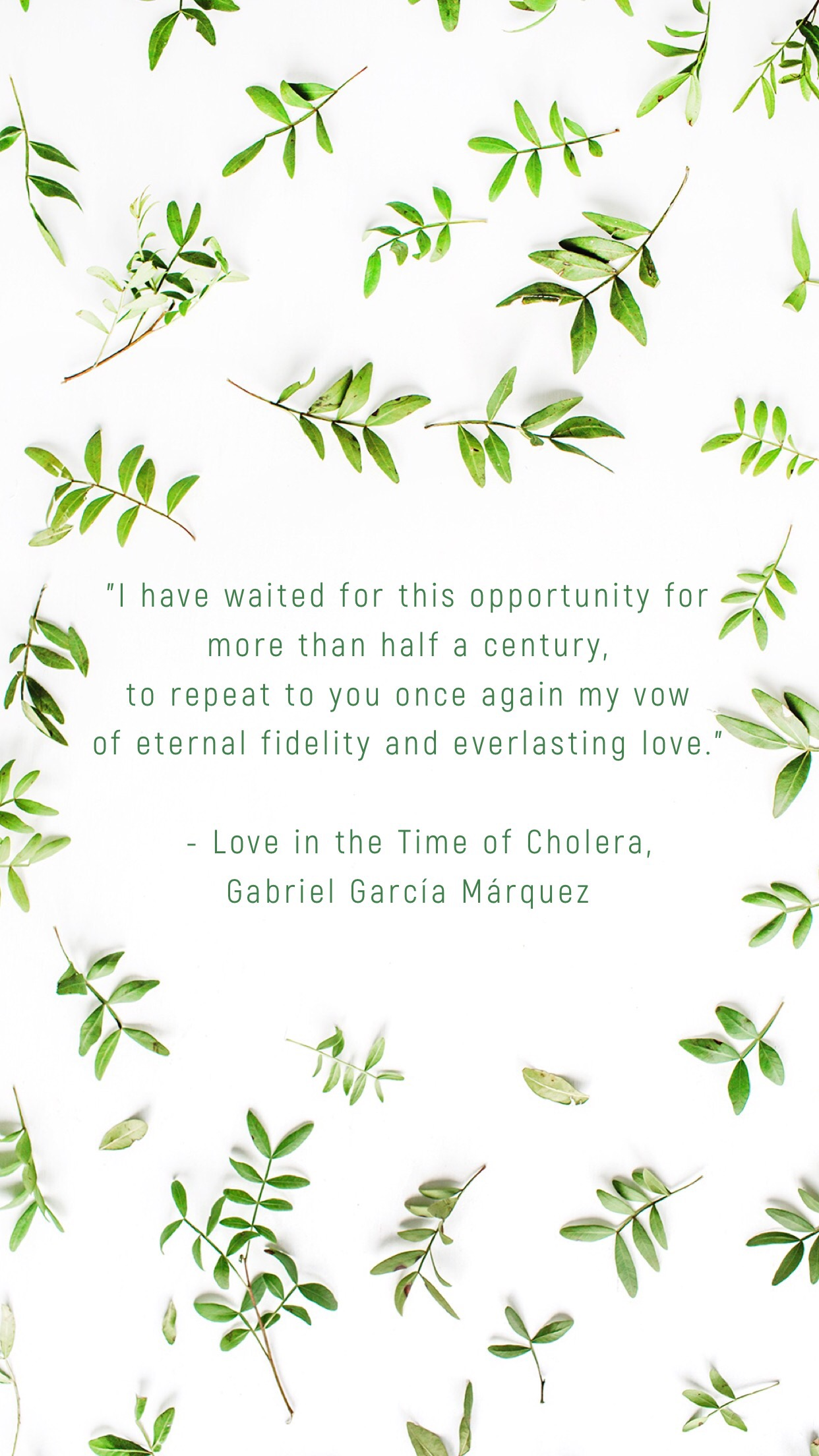 Quotes About Loving Books Books Quotes Love In The Time Of Cholera Kbooklover Living