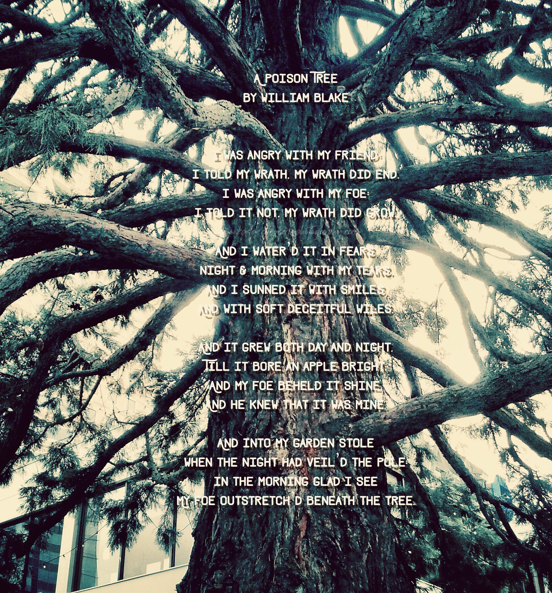 a poison tree by william blake pdf